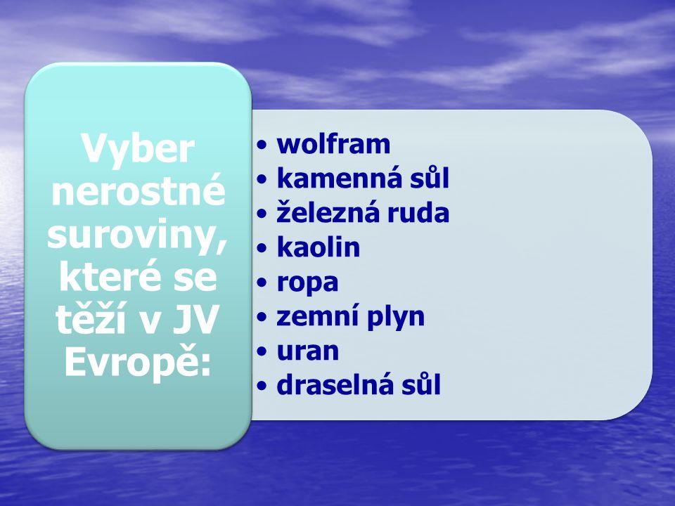 wolfram kamenná sůl železná ruda kaolin ropa zemní plyn uran draselná sůl Vyber nerostné suroviny, které se těží v JV Evropě: