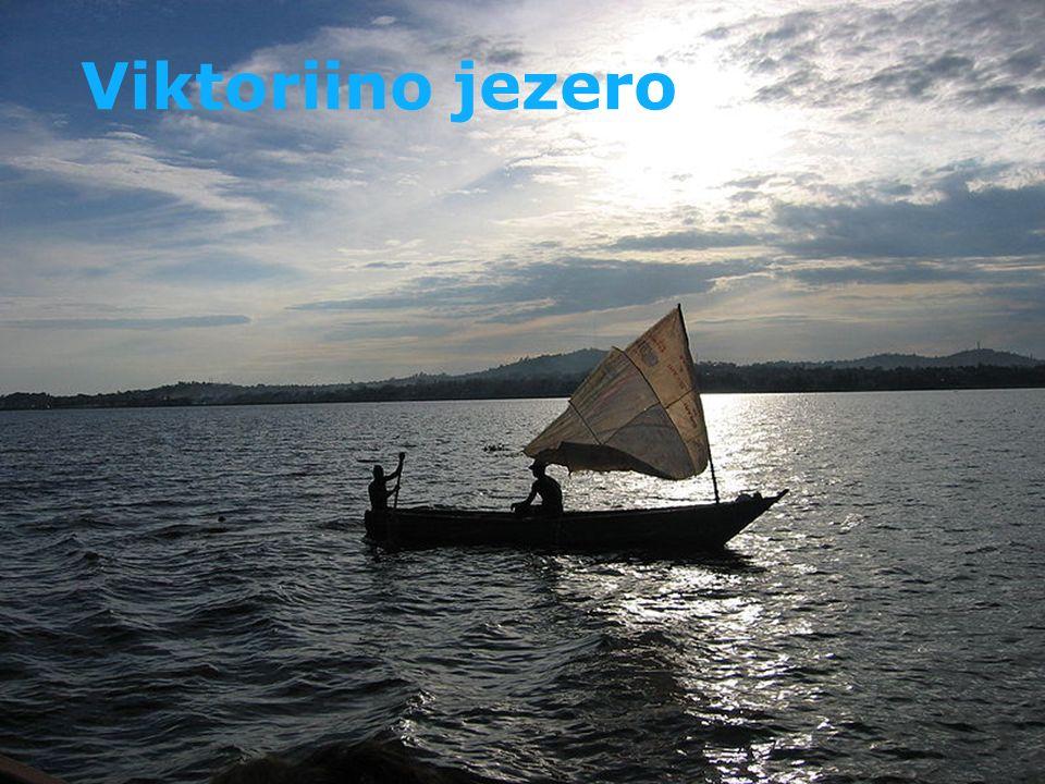 Modrý Nil