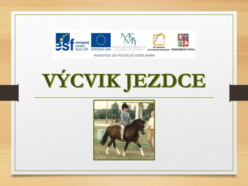VÝCVIK Souhrn činností, jejichž cílem je naučit jezdce komunikovat s koněm prostřednictvím základních pomůcek, správně sedět na koni, účelně používat zesilujících pomůcek.