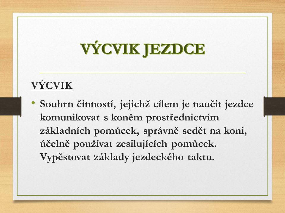 P LÁN ZÁKLADNÍHO VÝCVIKU JEZDCE 1.OBDOBÍ (1. - 20.