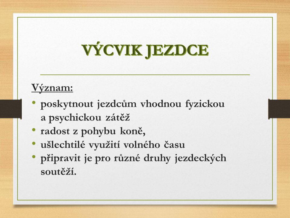 P LÁN ZÁKLADNÍHO VÝCVIKU JEZDCE 3.OBDOBÍ 91. - 104.