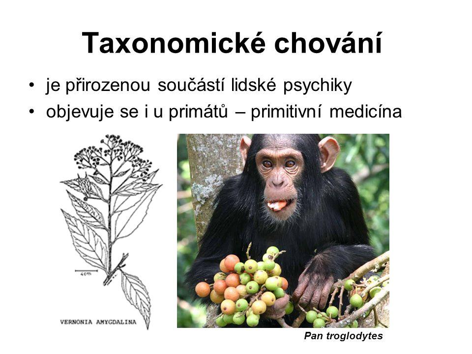 Taxonomické chování je přirozenou součástí lidské psychiky objevuje se i u primátů – primitivní medicína Pan troglodytes
