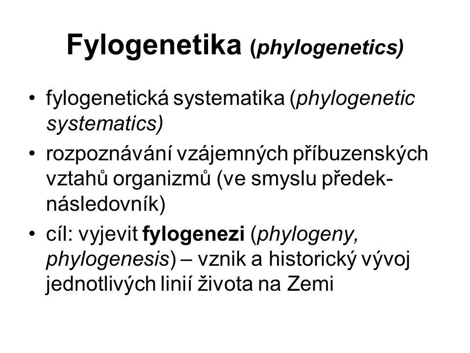 Fylogeneze předpoklady: - organizmy vytvářejí hierarchicky a enkapticky uspořádaný systém - život na Zemi se pravděpodobně vyvinul z jediného společného předka (LUCA – last universal common ancestor) 2 vzájemně se doplňující aspekty fylogeneze: - kladogeneze – větvení, štěpení vývojových linií - anageneze – změna vlastností v rámci linie pro odhalení příbuzenských vztahů a tvorbu klasifikace má význam především studium průběhu (historického pořadí) kladogeneze