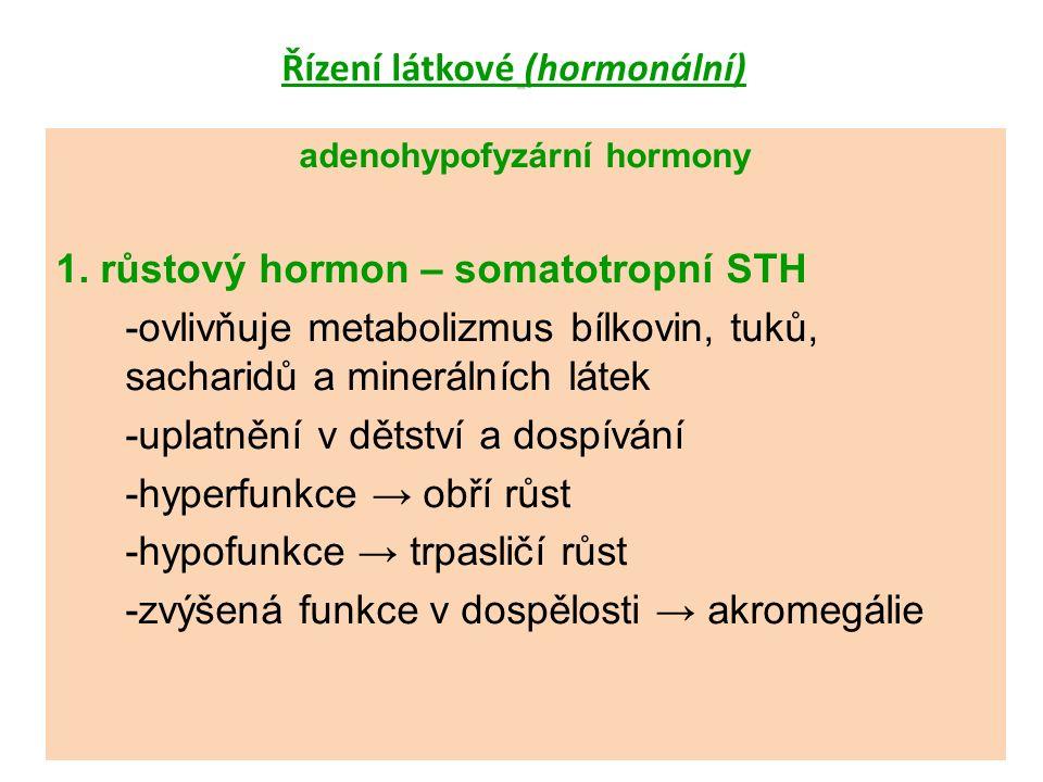 Řízení látkové (hormonální) adenohypofyzární hormony 1.