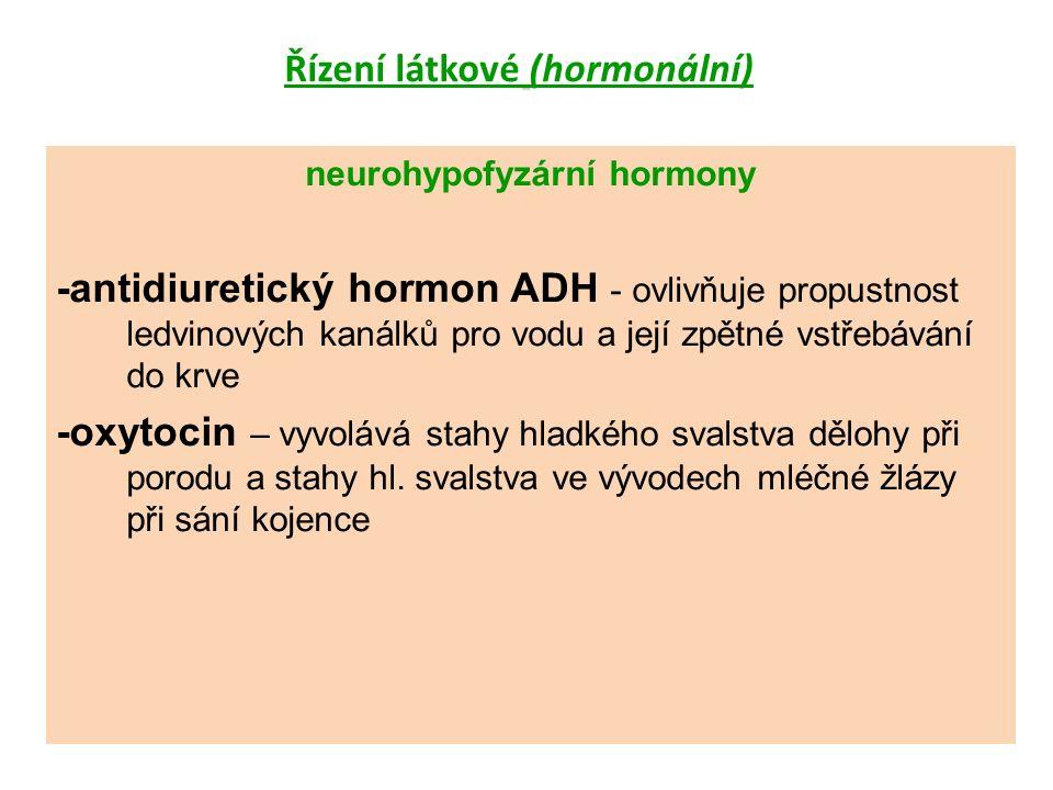 varlata (testes) -testosteron (ovlivňuje růst a vývoj pohlavních orgánů, vznik sekundárních pohlavních znaků, anabolický účinek) vaječníky (ovaria) -estrogeny (estradiol) -gestageny (progesteron) -ženské pohlavní hormony řídí menstruační cyklus, vývoj sekundárních pohlavních znaků, působí na děložní sliznici, na buňky mléčných žláz