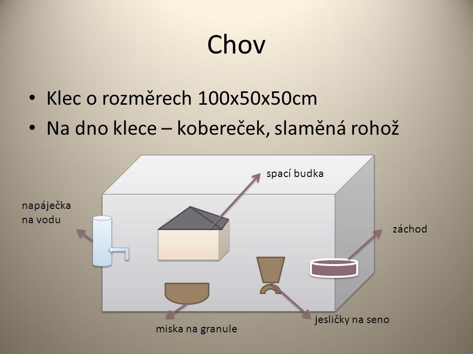 Chov Klec o rozměrech 100x50x50cm Na dno klece – kobereček, slaměná rohož záchod jesličky na seno miska na granule napáječka na vodu spací budka