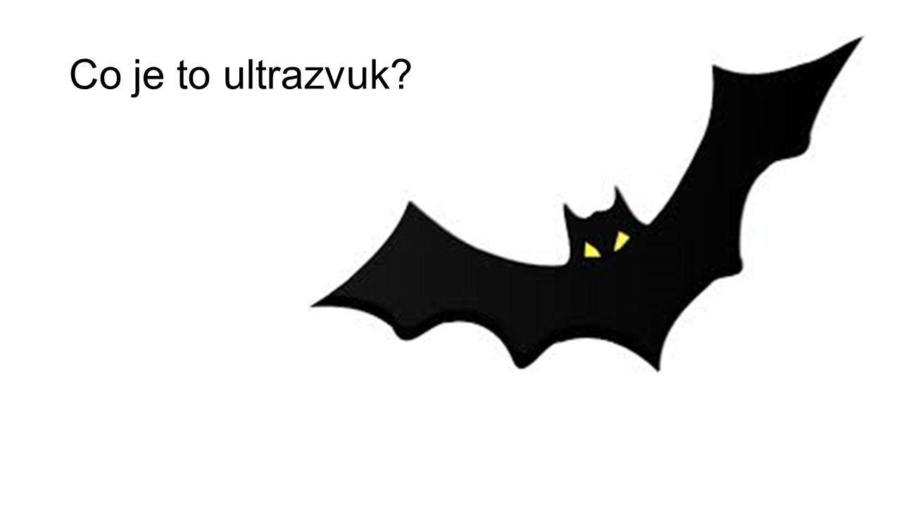 Co je to ultrazvuk?