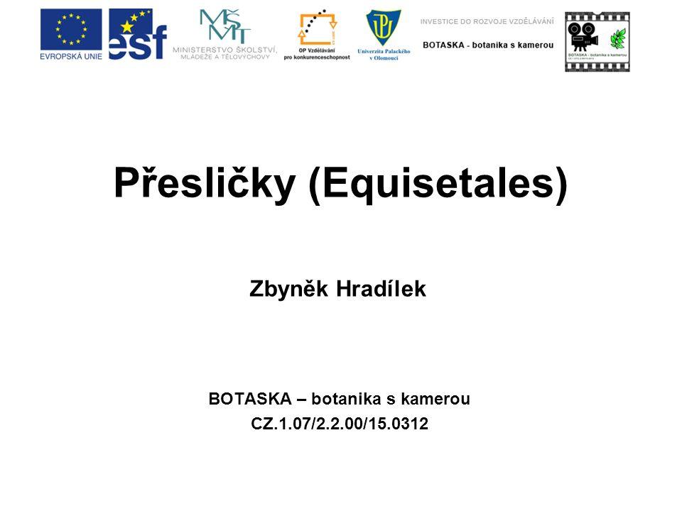 Přesličky (Equisetales) BOTASKA – botanika s kamerou CZ.1.07/2.2.00/15.0312 Zbyněk Hradílek