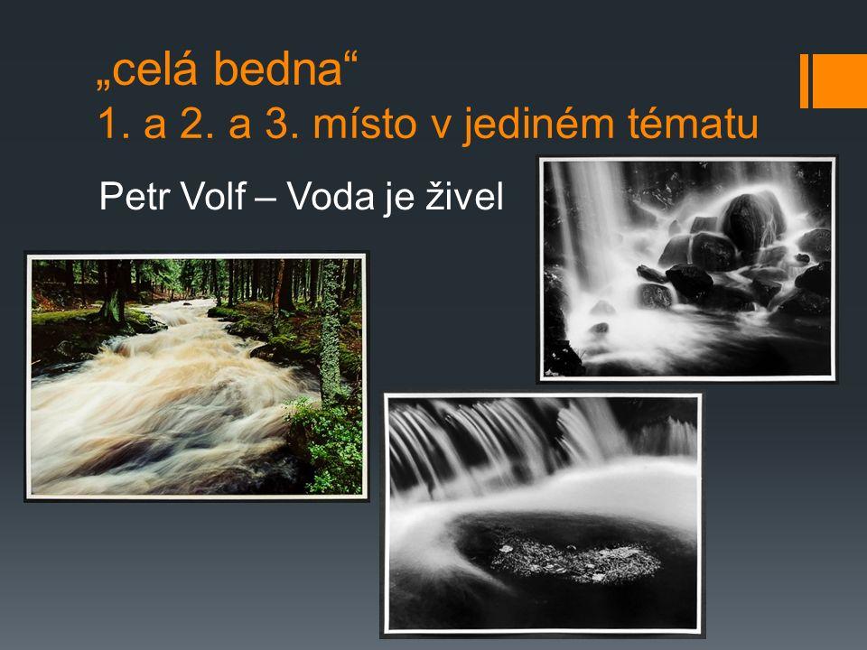 """""""celá bedna 1. a 2. a 3. místo v jediném tématu Petr Volf – Voda je živel"""