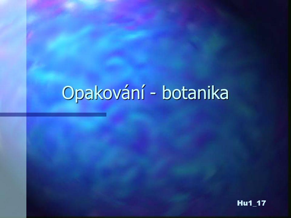 Opakování - botanika Hu1_17