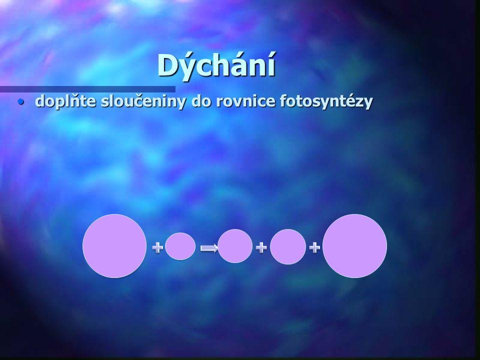 Dýchání C6H12O 6 6O2 6CO26H2O energie doplňte sloučeniny do rovnice fotosyntézydoplňte sloučeniny do rovnice fotosyntézy