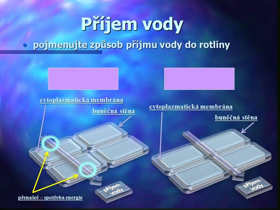 Příjem vody buněčná stěna cytoplazmatická membrána buněčná stěna cytoplazmatická membrána přenašeč – spotřeba energie pojmenujte způsob příjmu vody do rotlinypojmenujte způsob příjmu vody do rotliny pasivněaktivně