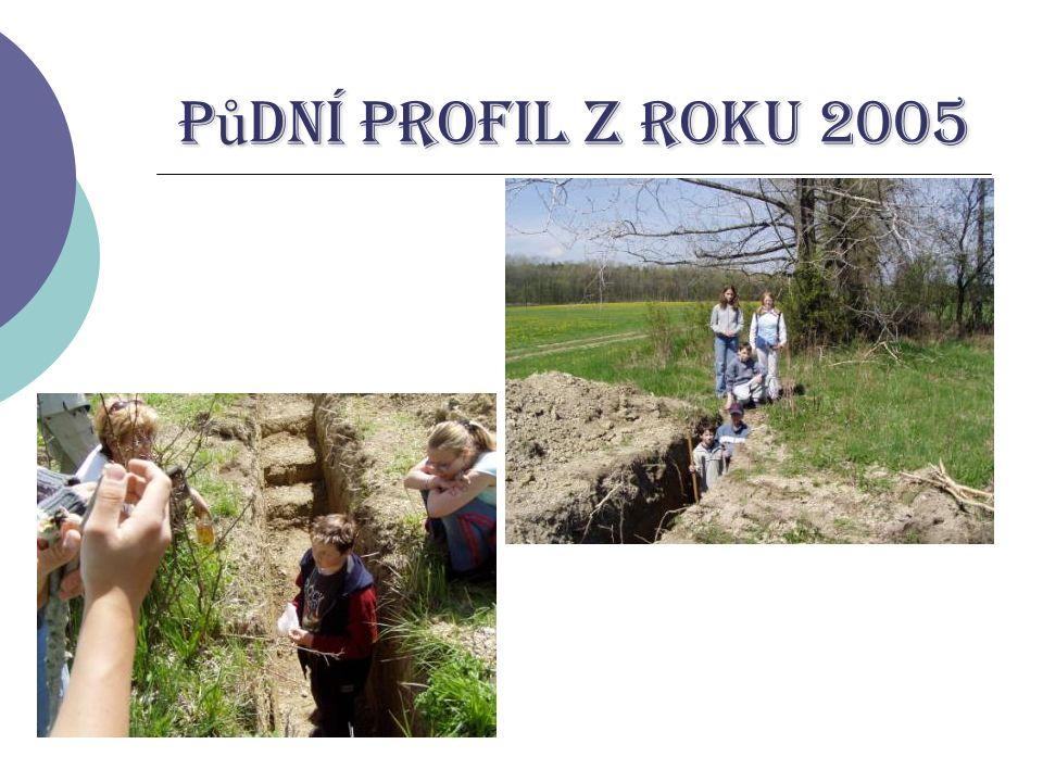 P ů dní profil z roku 2005