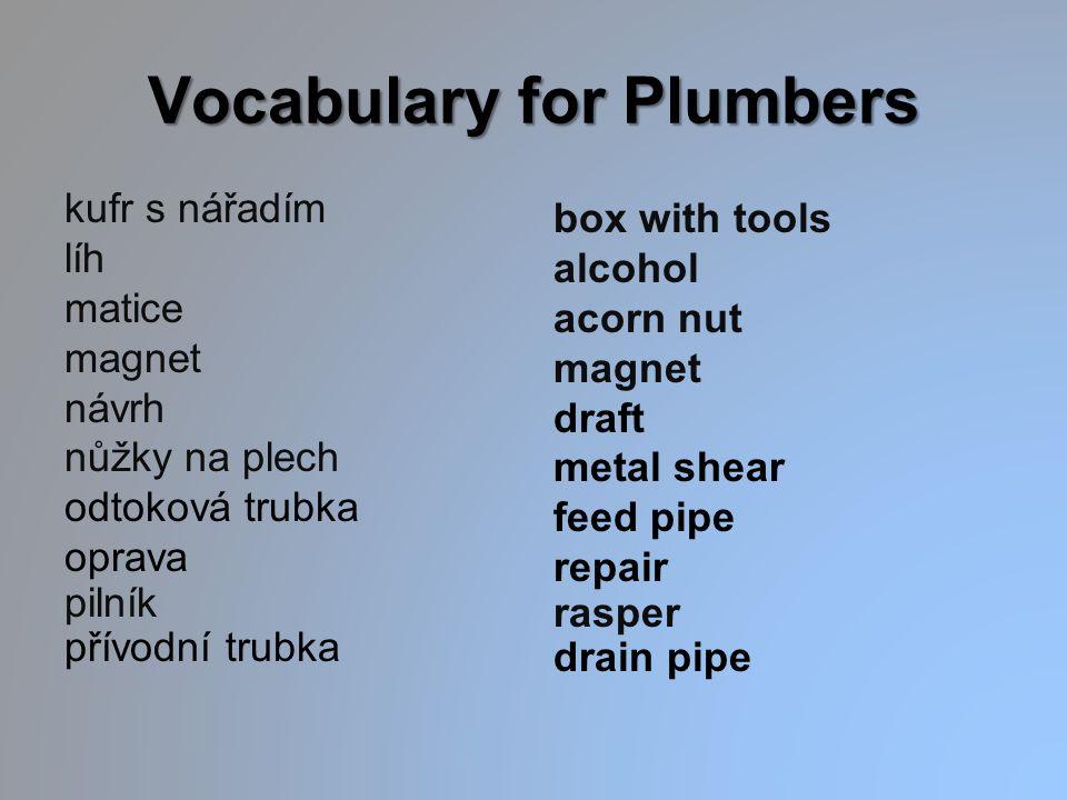 Vocabulary for Plumbers kufr s nářadím líh matice magnet návrh nůžky na plech odtoková trubka oprava pilník přívodní trubka box with tools alcohol aco