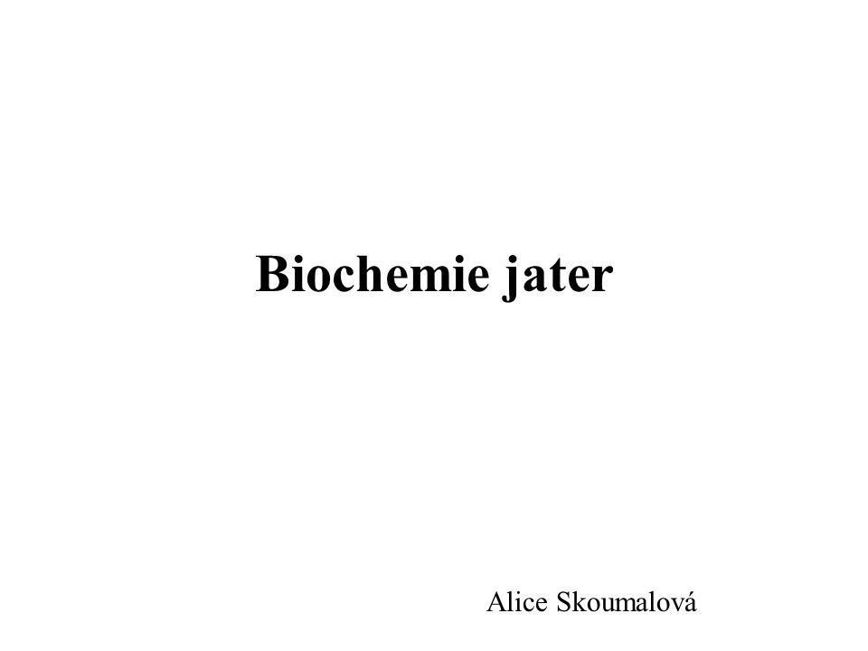  ALP (alkalická fosfatasa): -celková aktivita 4 enzymů (jaterní, kostní, střevní, placentární) -hepatobiliární onemocnění (obstrukce, abscesy, metastázy)  Bilirubin: -celkový a přímý (=konjugovaný)  Urobilinogen v moči: -zvýšení funkční nedostatečnost jater, překročení funkční kapacity jater  Bilirubin v moči: -zvýšen, je-li v plasmě zvýšen především přímý (konjugovaný) bilirubin (obstrukční a hepatocelulární iktery)