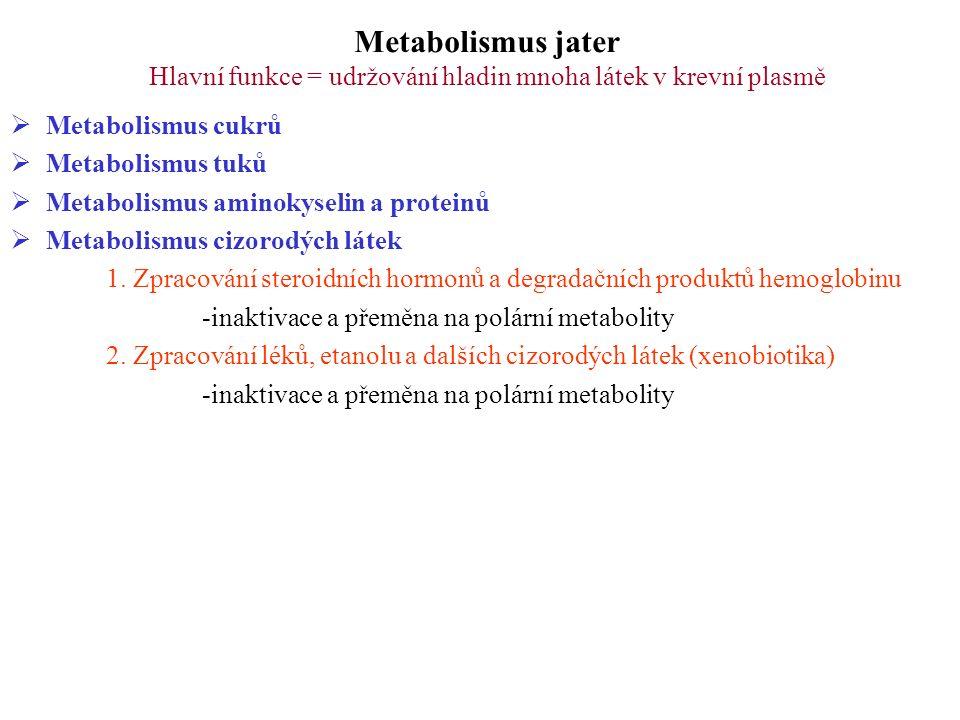 Metabolismus jater Hlavní funkce = udržování hladin mnoha látek v krevní plasmě  Metabolismus cukrů  Metabolismus tuků  Metabolismus aminokyselin a proteinů  Metabolismus cizorodých látek 1.