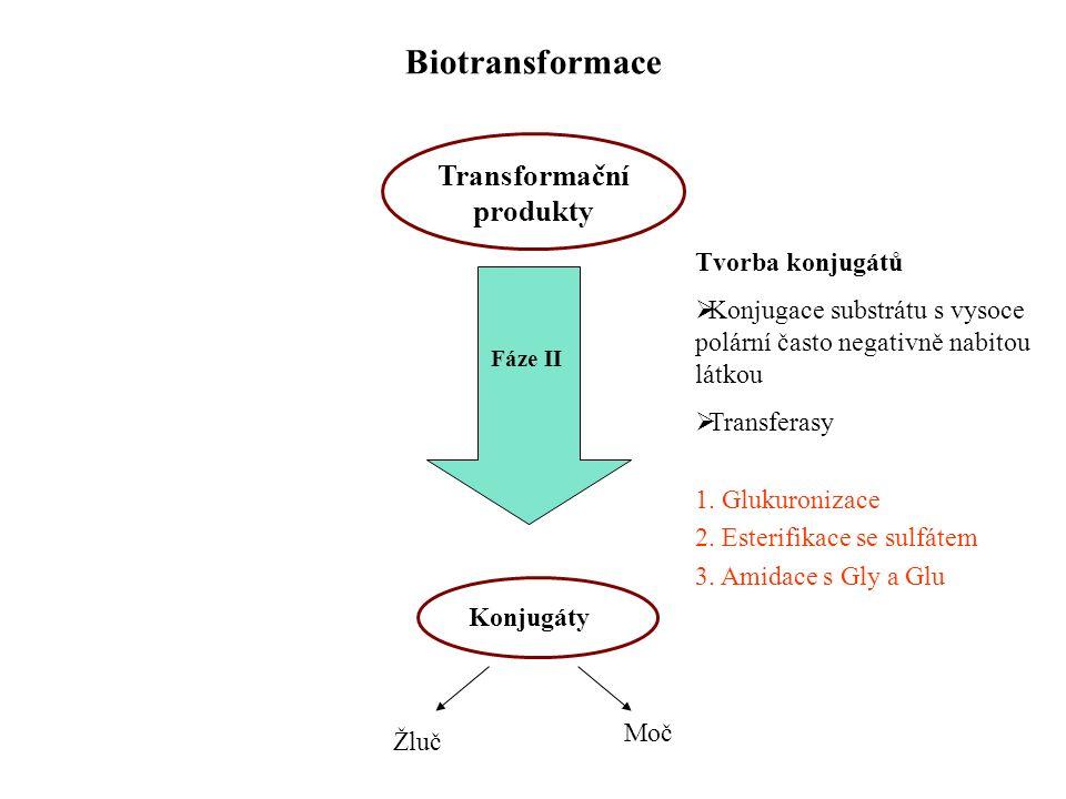 Biotransformace Transformační produkty Fáze II Konjugáty Žluč Moč Tvorba konjugátů  Konjugace substrátu s vysoce polární často negativně nabitou látkou  Transferasy 1.
