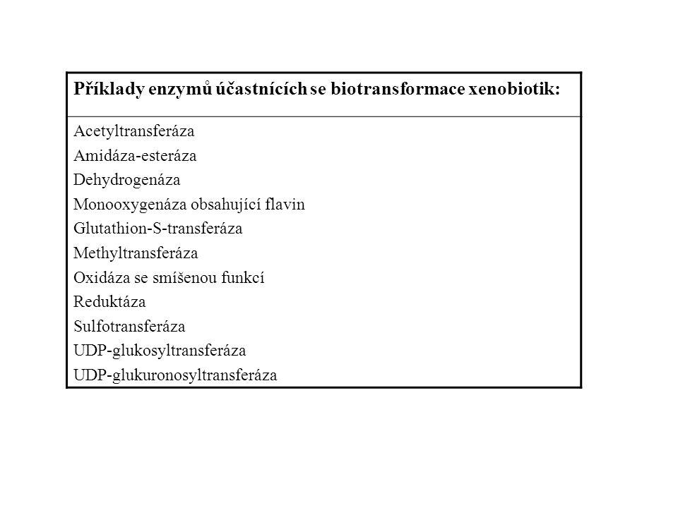 Příklady enzymů účastnících se biotransformace xenobiotik: Acetyltransferáza Amidáza-esteráza Dehydrogenáza Monooxygenáza obsahující flavin Glutathion-S-transferáza Methyltransferáza Oxidáza se smíšenou funkcí Reduktáza Sulfotransferáza UDP-glukosyltransferáza UDP-glukuronosyltransferáza