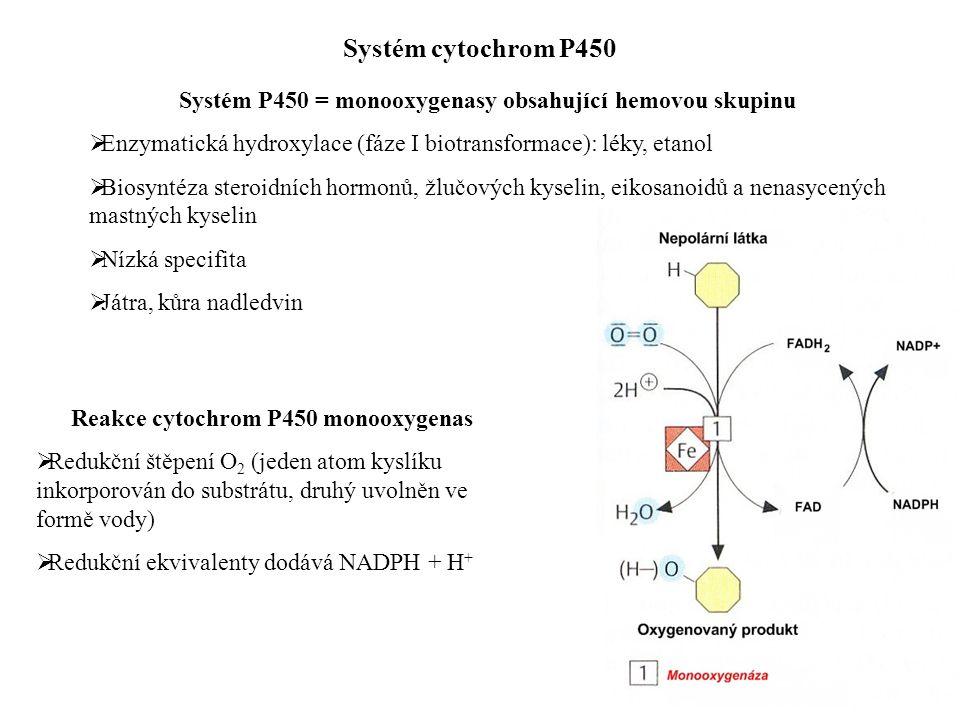 Systém cytochrom P450 Systém P450 = monooxygenasy obsahující hemovou skupinu  Enzymatická hydroxylace (fáze I biotransformace): léky, etanol  Biosyntéza steroidních hormonů, žlučových kyselin, eikosanoidů a nenasycených mastných kyselin  Nízká specifita  Játra, kůra nadledvin Reakce cytochrom P450 monooxygenas  Redukční štěpení O 2 (jeden atom kyslíku inkorporován do substrátu, druhý uvolněn ve formě vody)  Redukční ekvivalenty dodává NADPH + H +