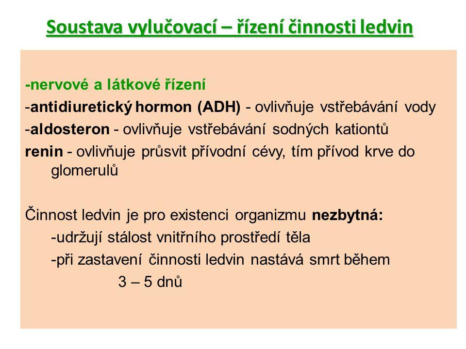 Soustava vylučovací – řízení činnosti ledvin -nervové a látkové řízení -antidiuretický hormon (ADH) - ovlivňuje vstřebávání vody -aldosteron - ovlivňuje vstřebávání sodných kationtů renin - ovlivňuje průsvit přívodní cévy, tím přívod krve do glomerulů Činnost ledvin je pro existenci organizmu nezbytná: -udržují stálost vnitřního prostředí těla -při zastavení činnosti ledvin nastává smrt během 3 – 5 dnů