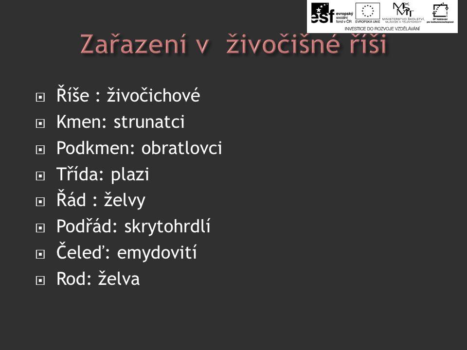  Slide 2: HUME, Greg.wikipedia.cz [online]. [cit.