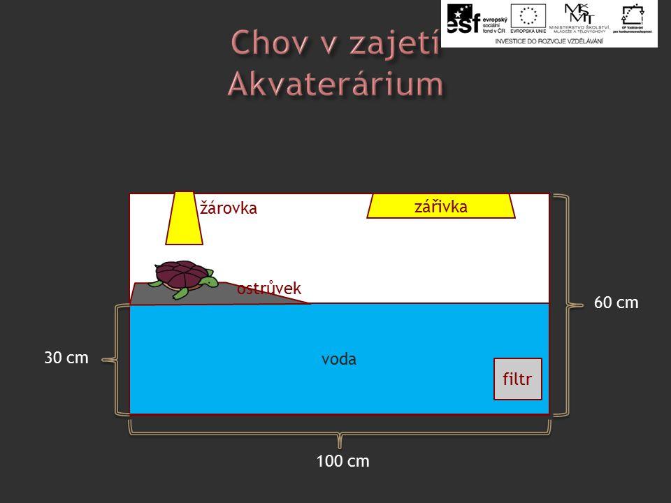 http://office.micr.com/cs- cz/images/results.aspx qu=%C5%BEelva&ex=1&AxInst alled=copy&Download=MC900151209&ext=WMF&c=0# ai:MC900151209osoft|ž voda filtr zářivka 100 cm 60 cm žárovka ostrůvek 30 cm