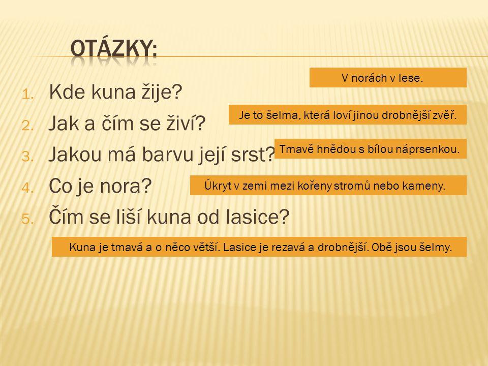  obrázek č.1 - KROPIVNIK, Dani.wikipedia.cz [online].