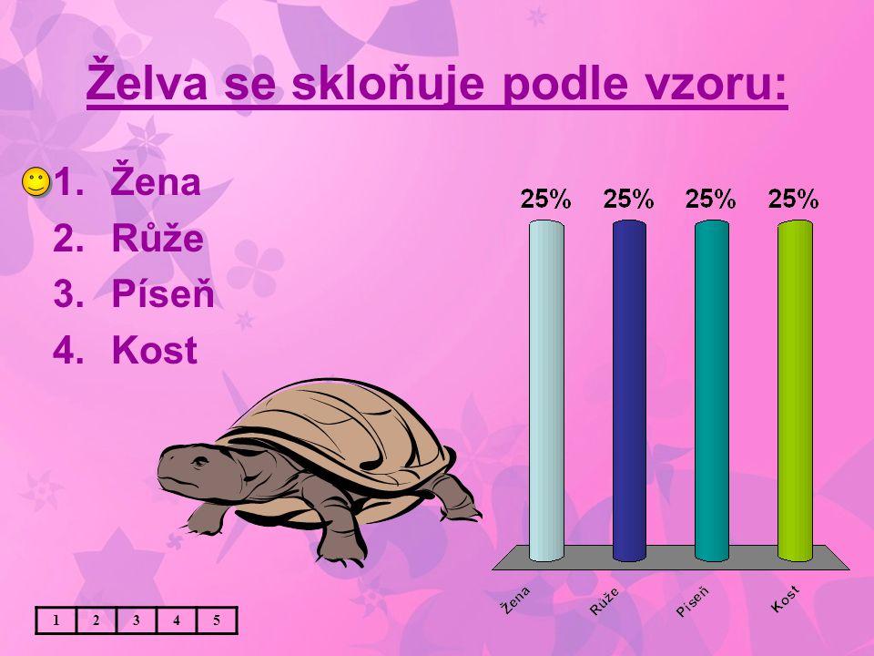 Želva se skloňuje podle vzoru: 1.Žena 2.Růže 3.Píseň 4.Kost 12345