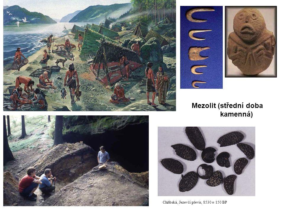 Chřibská, Jezevčí převis, 8530 ± 150 BP Mezolit (střední doba kamenná)