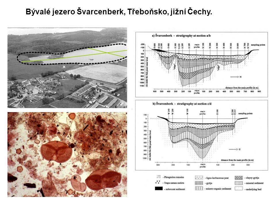 Bývalé jezero Švarcenberk, Třeboňsko, jižní Čechy.