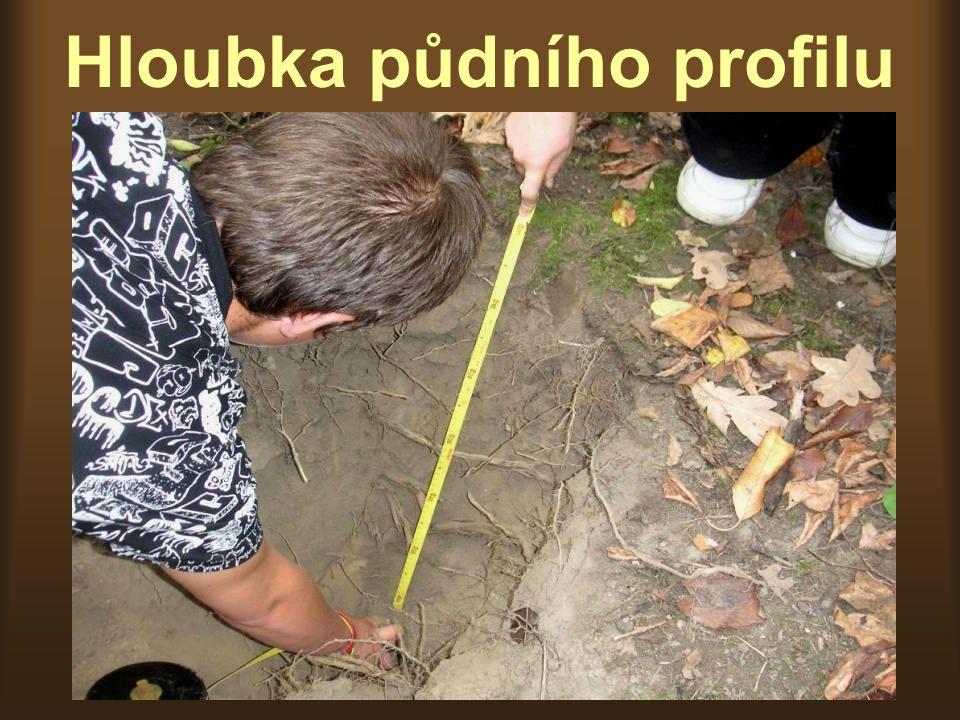 Hloubka půdního profilu