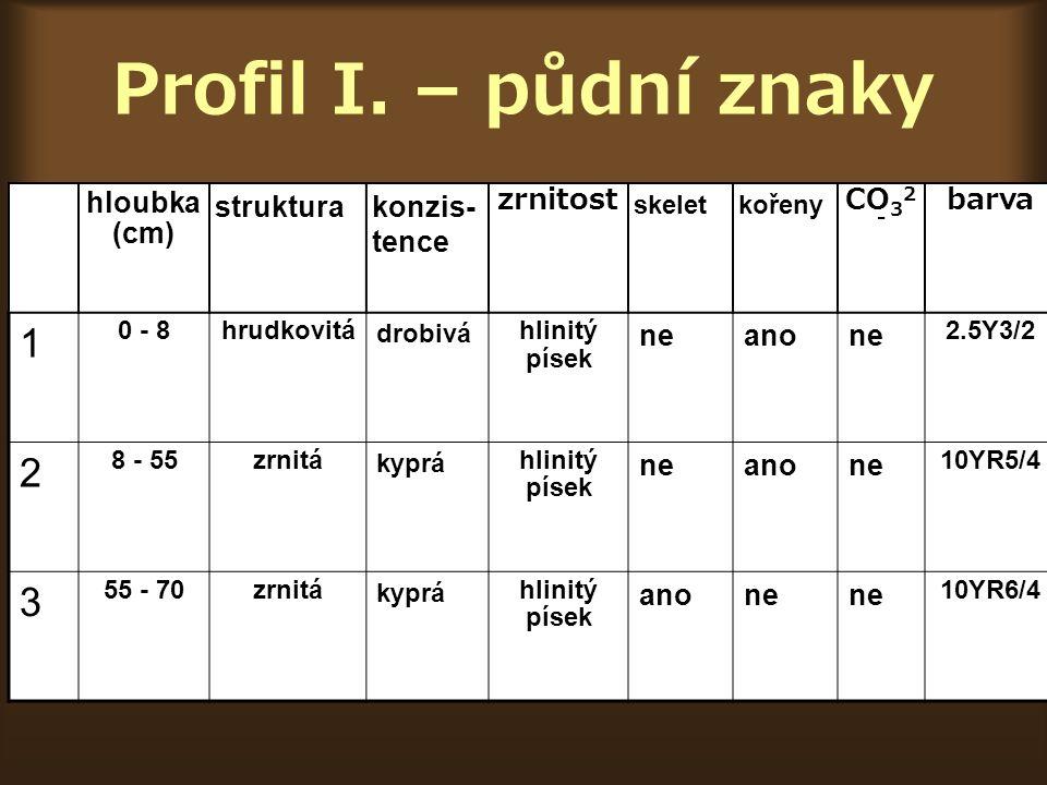 Profil II.