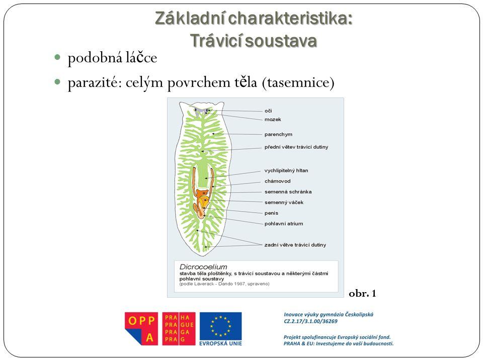 Základní charakteristika: Trávicí soustava podobná lá č ce parazité: celým povrchem t ě la (tasemnice) obr. 1