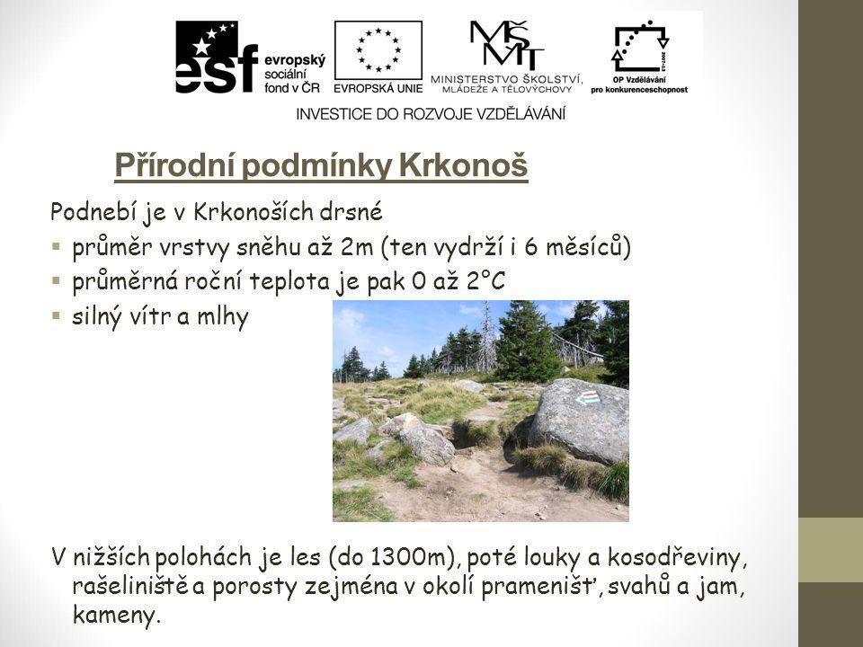 Užovka obojková (Natrix natrix) Výskyt – Evropa (mimo Irsko), SZ Afrika, JZ Asie, hlavně nížiny.