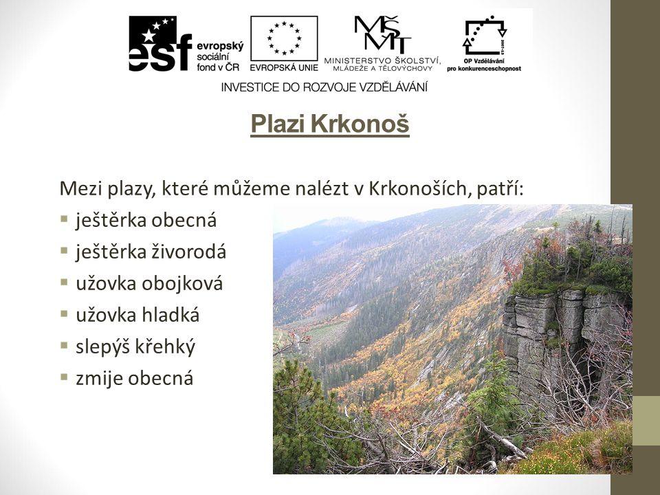 Citace obrázků Slide 3: ŠJŮ.Wikipedia.org [online].