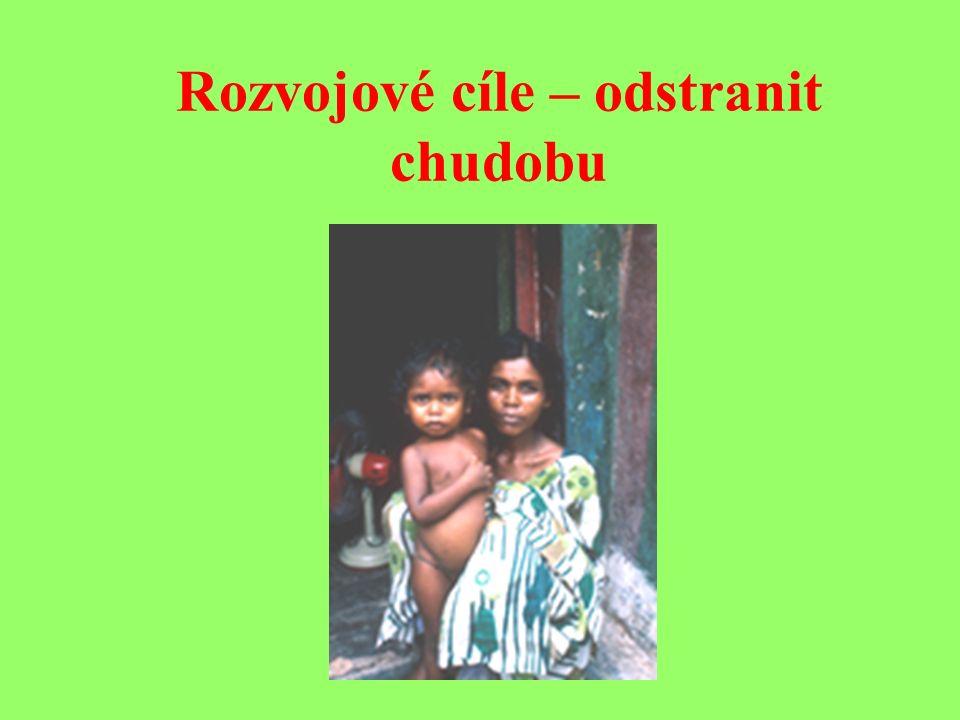 Cíle pro rozvojové země Dosáhnout toho, aby do roku 2015 všechny děti dokončily základní vzdělání Proto rozvojové země musí mít povinnou školní docházku.