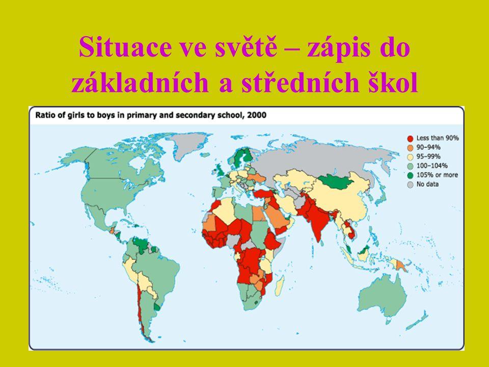 Rozdílné pracovní příležitosti mužů a žen Ženy nejsou stejně integrovány do tržní ekonomiky Jen malý pokrok byl zaznamenán v zaměstnání žen v nezemědělském sektoru Tento jev se týká rovněž podílu na moci, jen část žen v současném světě se účastní politických rozhodování Vzdělání se promítá i do tohoto jevu