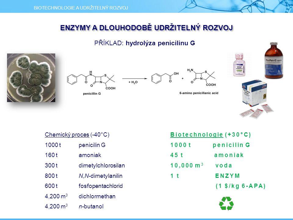PŘÍKLAD: hydrolýza penicilinu G Biotechnologie (+30°C) 1000 t penicilin G 45 t amoniak 10,000 m 3 voda 1 t ENZYM (1 $/kg 6-APA) Chemický proces (-40°C) 1000 t penicilin G 160 t amoniak 300 t dimetylchlorosilan 800 t N,N-dimetylanilin 600 t fosfopentachlorid 4,200 m 3 dichlormethan 4,200 m 3 n-butanol BIOTECHNOLOGIE A UDRŽITELNÝ ROZVOJ ENZYMY A DLOUHODOBĚ UDRŽITELNÝ ROZVOJ
