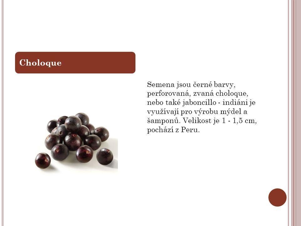 Semena jsou černé barvy, perforovaná, zvaná choloque, nebo také jaboncillo - indiáni je využívají pro výrobu mýdel a šamponů. Velikost je 1 - 1,5 cm,