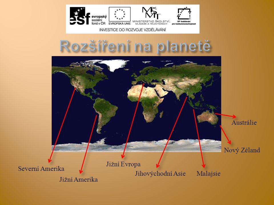  Citace obrázků:  Slide 2: obr.1 DRÄGÜS.wikipedia.cz [online].