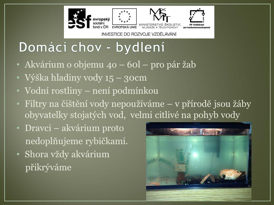 Akvárium o objemu 4o – 60l – pro pár žab Výška hladiny vody 15 – 30cm Vodní rostliny – není podmínkou Filtry na čištění vody nepoužíváme – v přírodě jsou žáby obyvatelky stojatých vod, velmi citlivé na pohyb vody Dravci – akvárium proto nedoplňujeme rybičkami.
