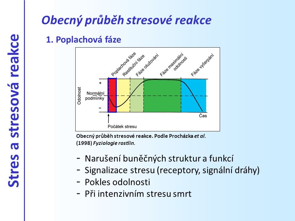 Obecný průběh stresové reakce Obecný průběh stresové reakce. Podle Procházka et al. (1998) Fyziologie rostlin. 1. Poplachová fáze - Narušení buněčných