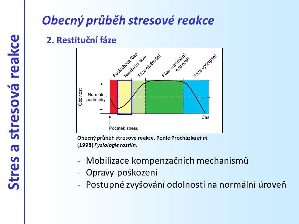 2. Restituční fáze -Mobilizace kompenzačních mechanismů -Opravy poškození -Postupné zvyšování odolnosti na normální úroveň Obecný průběh stresové reak