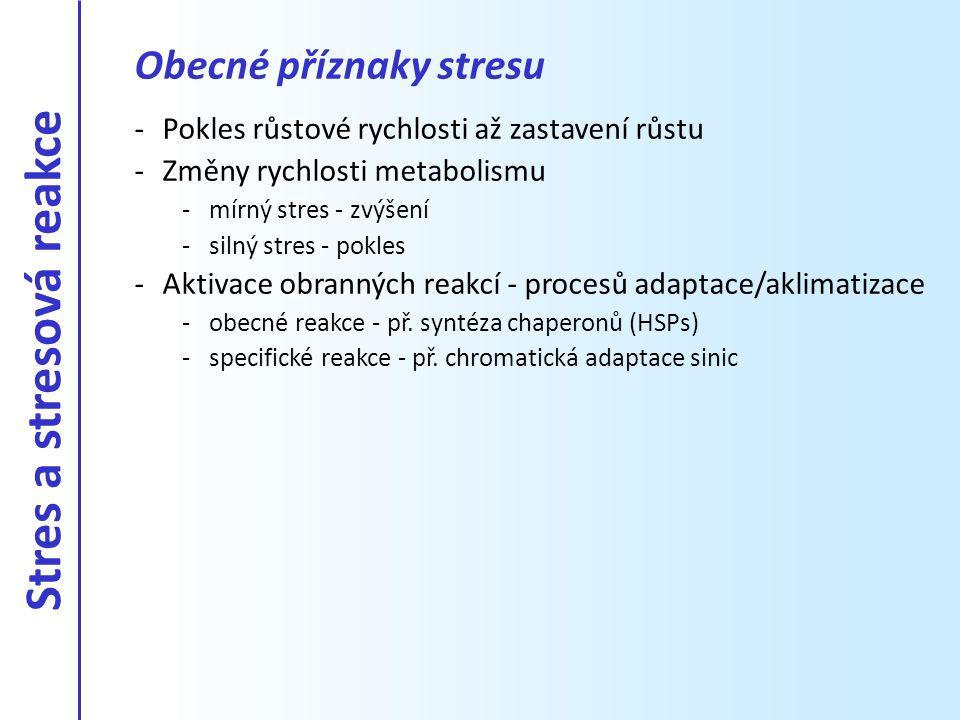 Obecné příznaky stresu -Pokles růstové rychlosti až zastavení růstu -Změny rychlosti metabolismu -mírný stres - zvýšení -silný stres - pokles -Aktivac