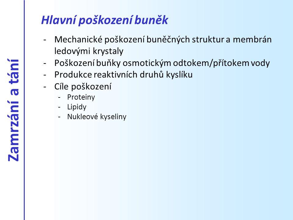 -Mechanické poškození buněčných struktur a membrán ledovými krystaly -Poškození buňky osmotickým odtokem/přítokem vody -Produkce reaktivních druhů kys
