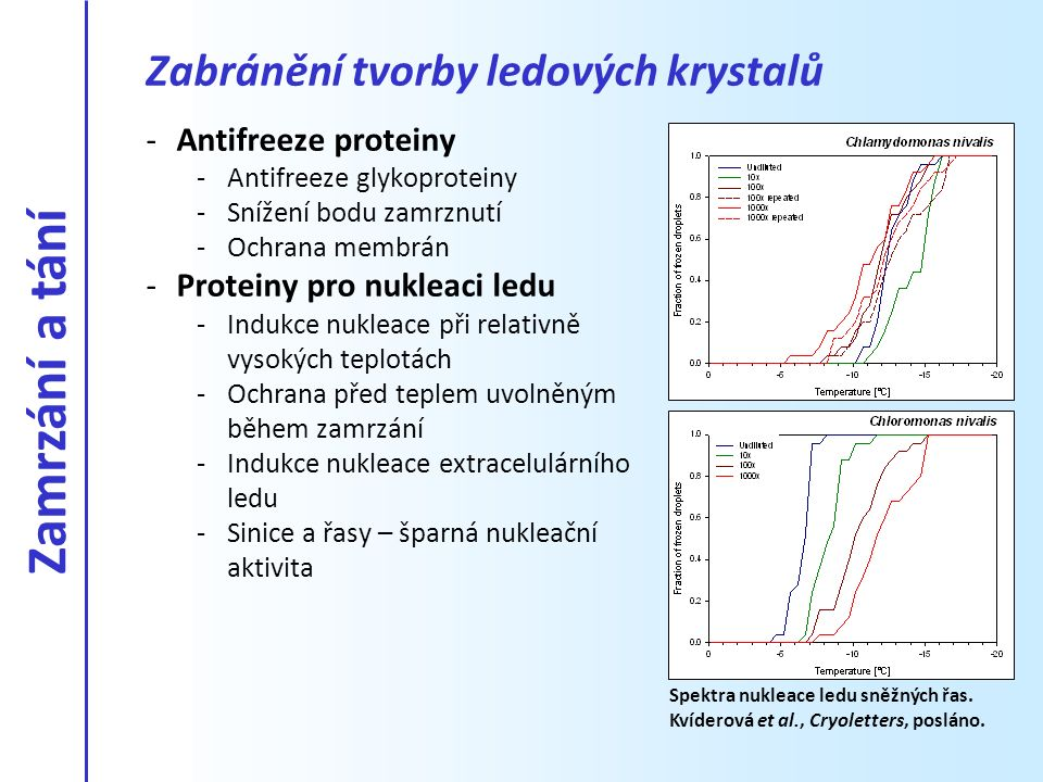 -Antifreeze proteiny -Antifreeze glykoproteiny -Snížení bodu zamrznutí -Ochrana membrán -Proteiny pro nukleaci ledu -Indukce nukleace při relativně vy