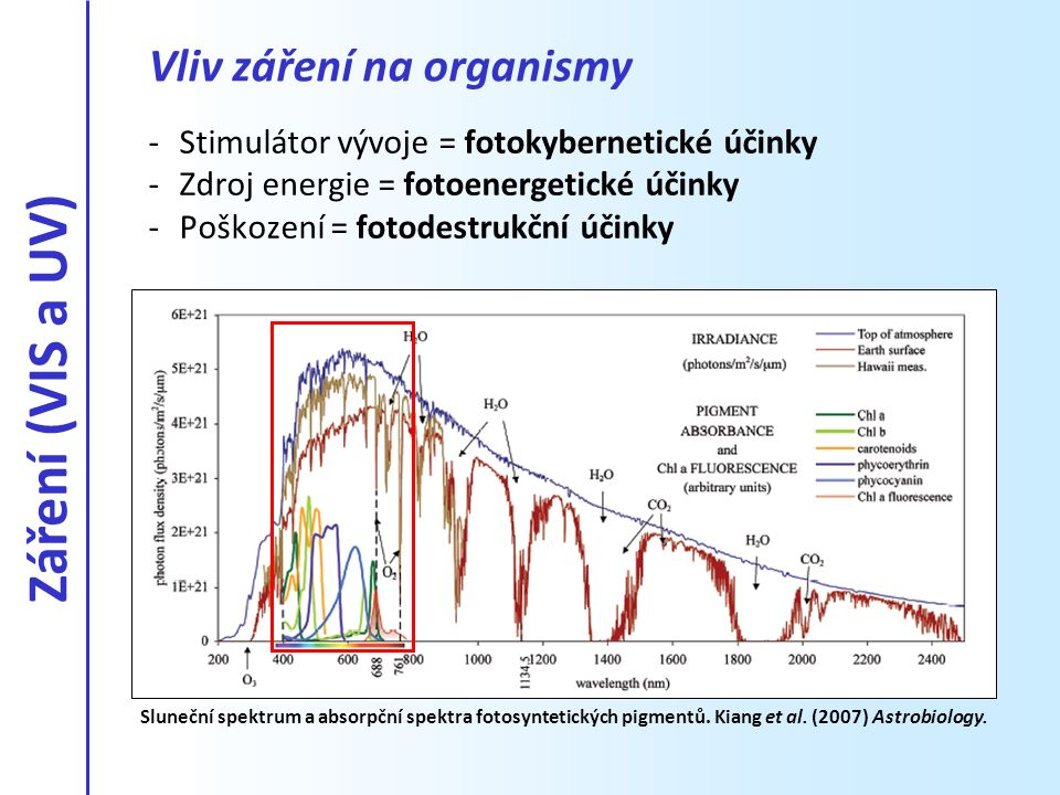 Vliv záření na organismy -Stimulátor vývoje = fotokybernetické účinky -Zdroj energie = fotoenergetické účinky -Poškození = fotodestrukční účinky Slune