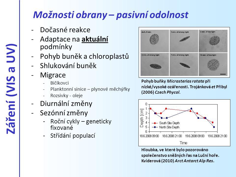 -Dočasné reakce -Adaptace na aktuální podmínky -Pohyb buněk a chloroplastů -Shlukování buněk -Migrace -Bičíkovci -Planktonní sinice – plynové měchýřky