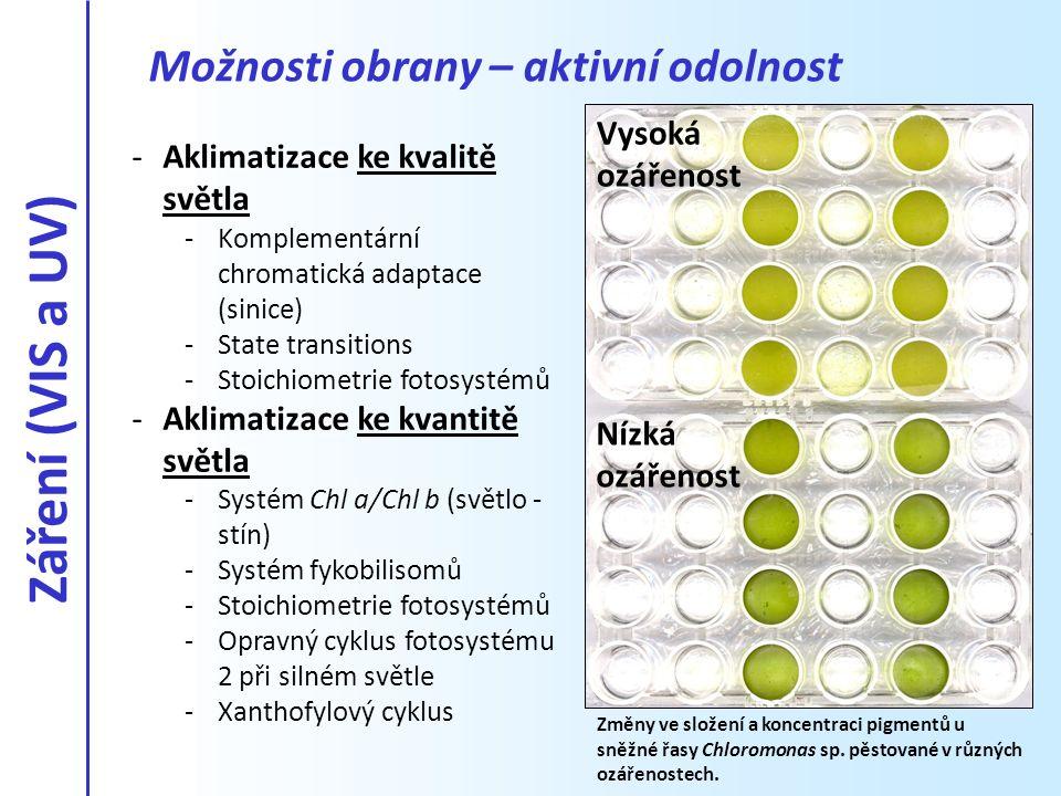 -Aklimatizace ke kvalitě světla -Komplementární chromatická adaptace (sinice) -State transitions -Stoichiometrie fotosystémů -Aklimatizace ke kvantitě