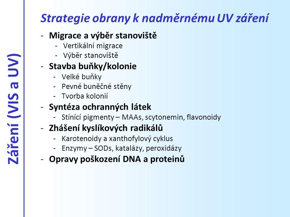 -Migrace a výběr stanoviště -Vertikální migrace -Výběr stanoviště -Stavba buňky/kolonie -Velké buňky -Pevné buněčné stěny -Tvorba kolonií -Syntéza och